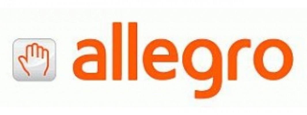 Jak Rozliczyc Sprzedaz Na Allegro Rozliczenie Pit Przez Internet 2019 2020